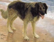 Лучший друг человека (Пес). 1908