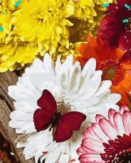 Бабочка на герберах