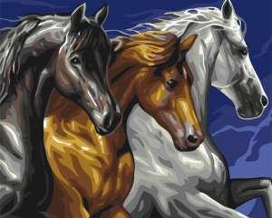Трио лошадей
