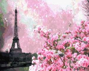 Цветение сакуры в Париже