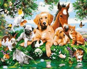 Дружелюбные животные