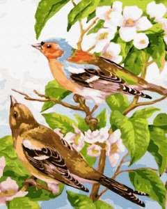 Весенние птички