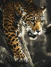 Хищник в джунглях