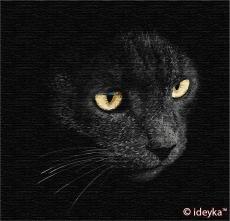 Взгляд хищника. Сергей Полушко