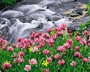 Цветущий водопад