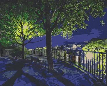 """Картина для росписи по номерам """"Ночной парк"""" 38 х 50 см 10532-AC"""