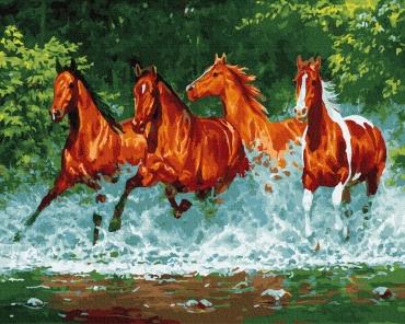 Бегущие по воде