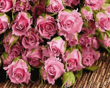 """Картина для росписи по номерам """"Букет розовых роз"""" 40 х 50 см BRM34269"""