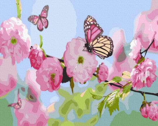 Бабочки в цветах сакуры